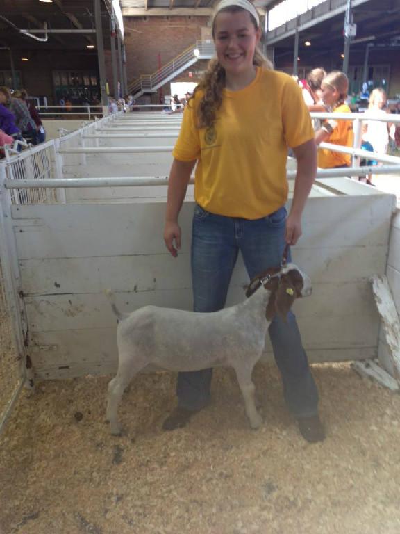 1st in class 2013 MN State Fair-FFA