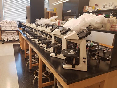 microscope-lab-set-up-1024x768.jpg