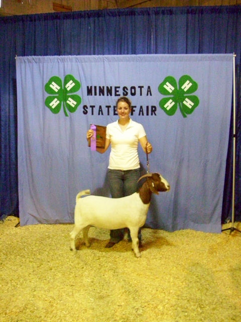 2009 MN State Fair Yearling