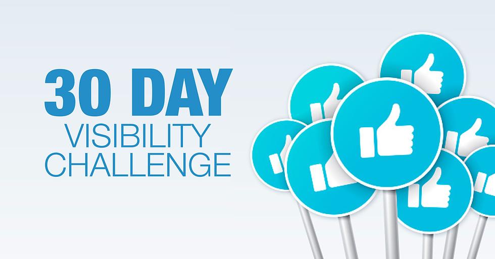 Visability challenge.png