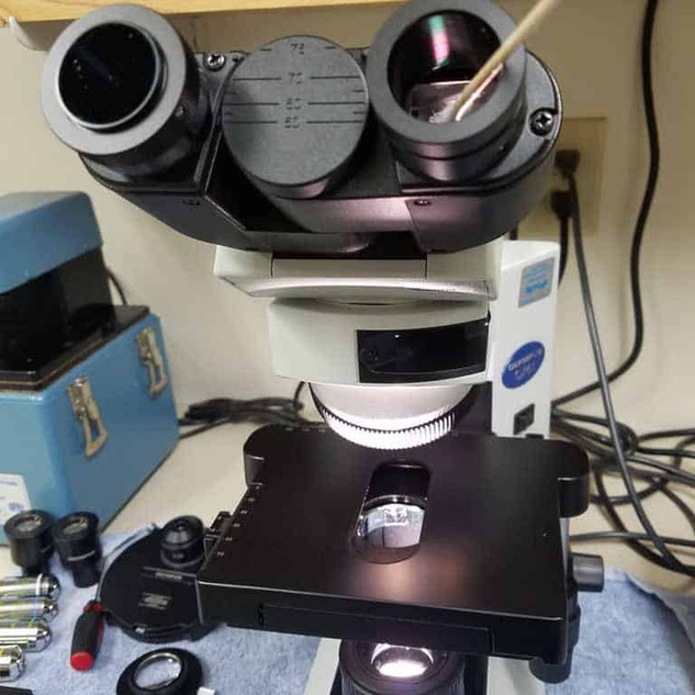 microscope-cleaning-service-05-768x1024.