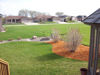 May is the time to plant new trees and shrubs!