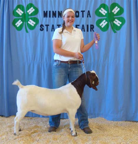 2013 MN State Fair Purple Ribbon
