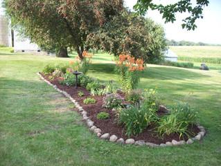 Summer Garden Success Tips