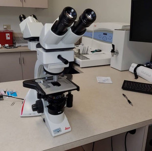 leica-microscope-768x1024.jpg