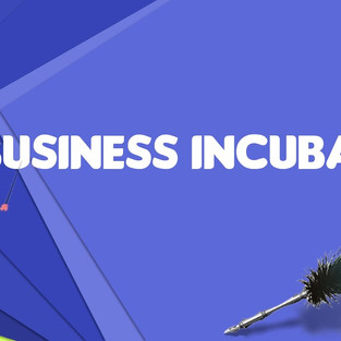 What is a Business Incubator?
