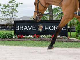 5 Reasons to Add Brave Horse Ohio to Your Summer Show Schedule