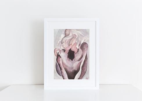 Devotion_Iris Pink.jpeg
