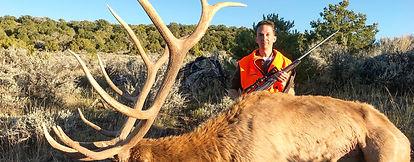 elk hunting colorado