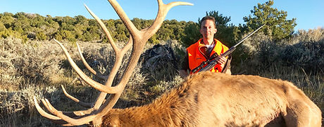 elk hunting colorado