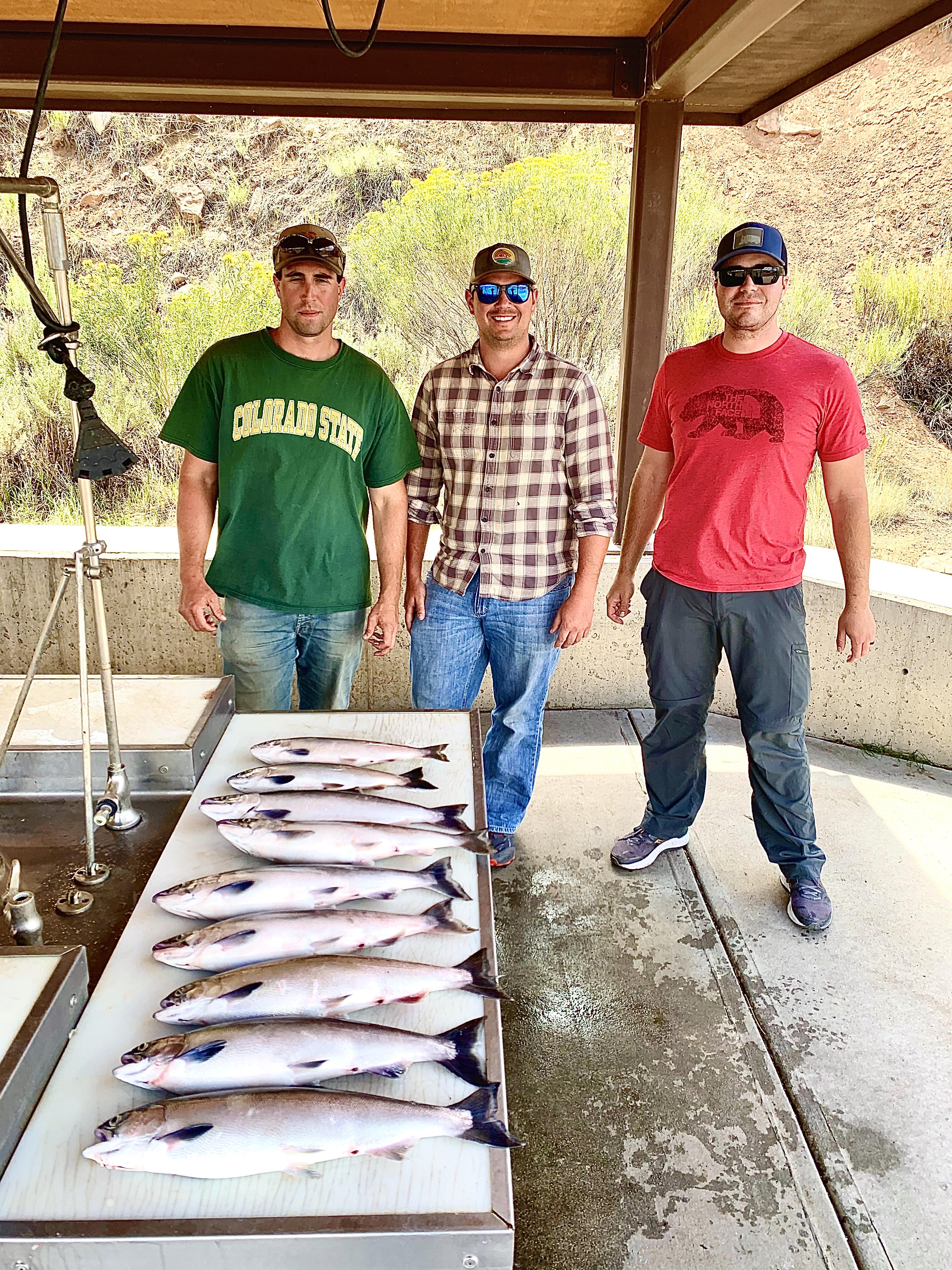 Kokanee salmon jigging
