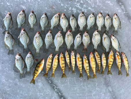 Guided Ice fishing trip in western Colorado