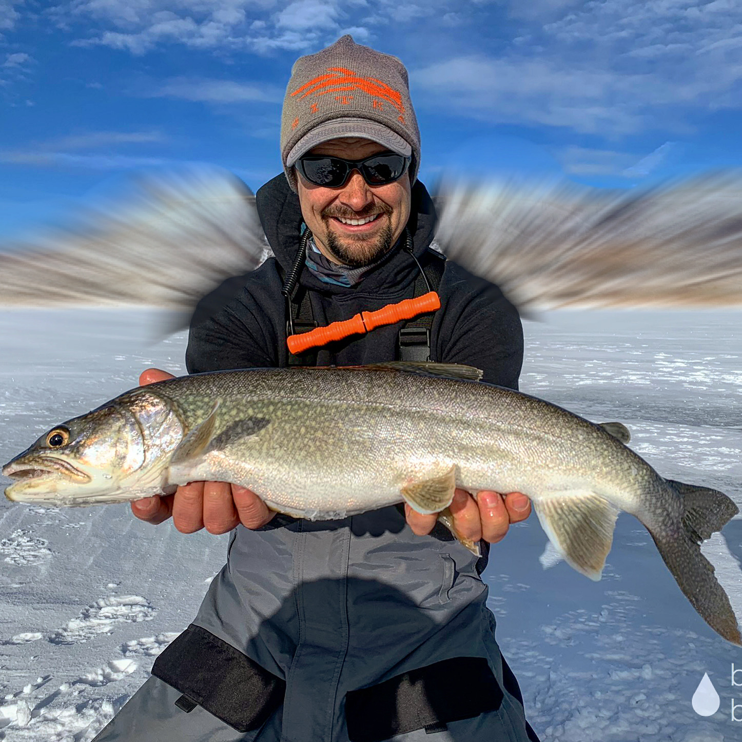 BLUE MESA LAKE TROUT
