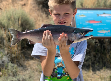 Fishing Trips on Blue Mesa Reservoir in Gunnison Colorado