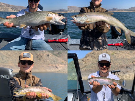 Blue Mesa Reservoir in Gunnison Colorado is fishing well!