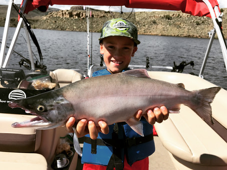 Blue Mesa Fishing for Kokanee Salmon is going great....