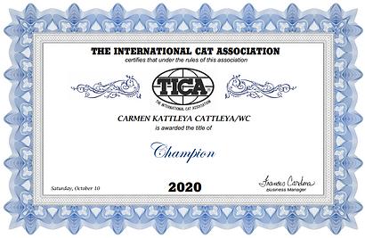 carmen title.PNG