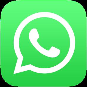 294px-WhatsApp_logo-color-vertical.svg
