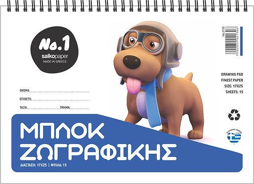 2130-ΜΠΛΟΚ ΖΩΓΡΑΦΙΚΗΣ Νο1-SALKO
