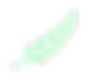 bialthoff_RGB-09.png