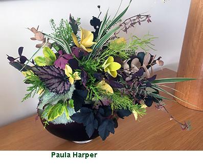 Paula Harper