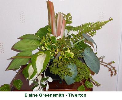 Elaine Greensmith - Tiverton