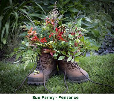 Sue Farley