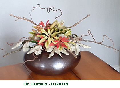 Lin Banfield- Liskeard