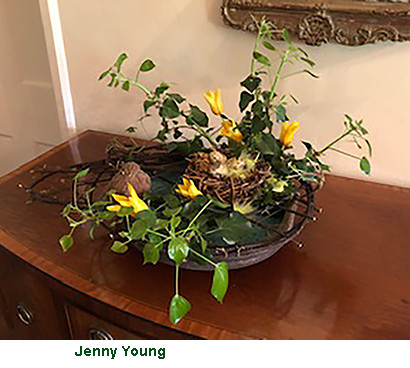 Jenny Young 2