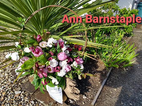 Barnstaple - Ann