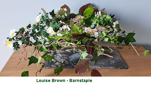 Louise Brown2 - Barnstaple