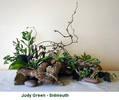 Judy Green - Sidmouth