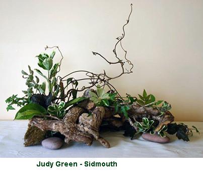 Judy Green - Sidmouth