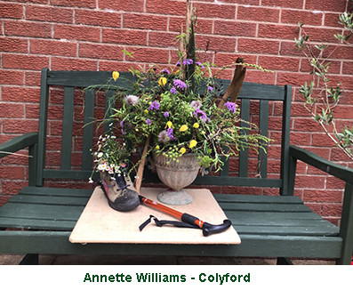 Annette Williams - Colyford