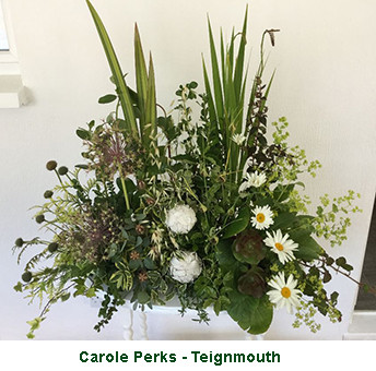 Carole Perks - Teignmouth