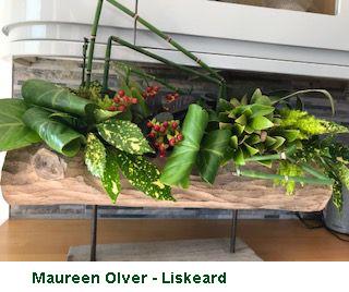 Maureen Olver - Liskeard