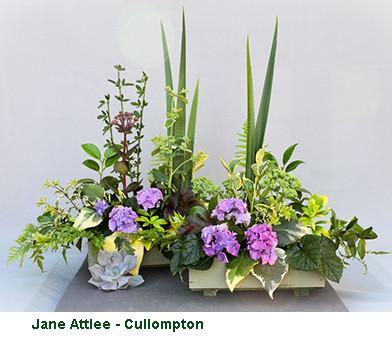Jane Attlee - Cullopton
