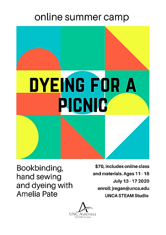 Dyeing for a Picnic 2020 w logo.png