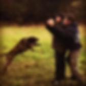 dog training manhattan