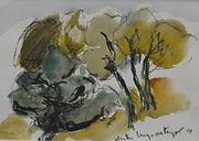 Arbres à Gordes, 2014, 25x30, aquarelle, Christine Lévy-Rostagnat
