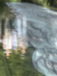 P22-1_tonemapped.jpg