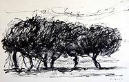 Arbres à Gordes 2015, 20x35, crayon aquarelle, Christine Lévy-Rostagnat