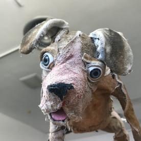 Wandering Dog (detail)