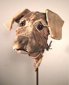DogHead #6, Hazel