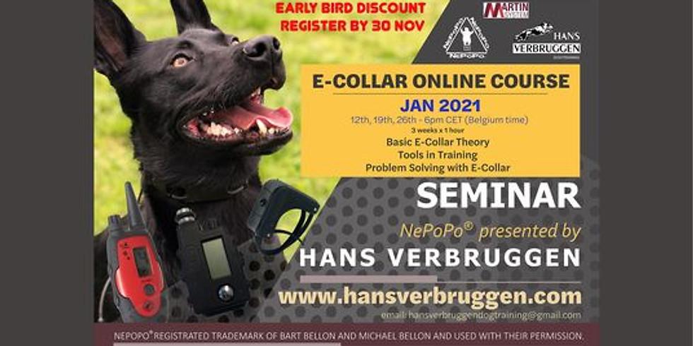 E-collar Online course by Hans Verbruggen
