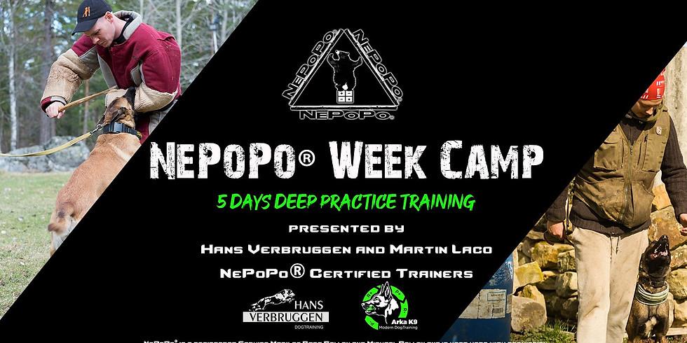 NePoPo® Camp Czech Republic