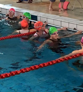 Swimming-picture-cropped.jpg
