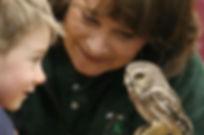 International Owl Festival in Houston, MN