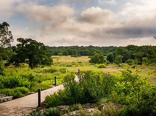 The Wildflower Center I Brushy Creek Events