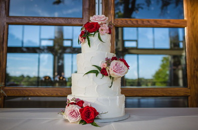 stephanie cake.jpg